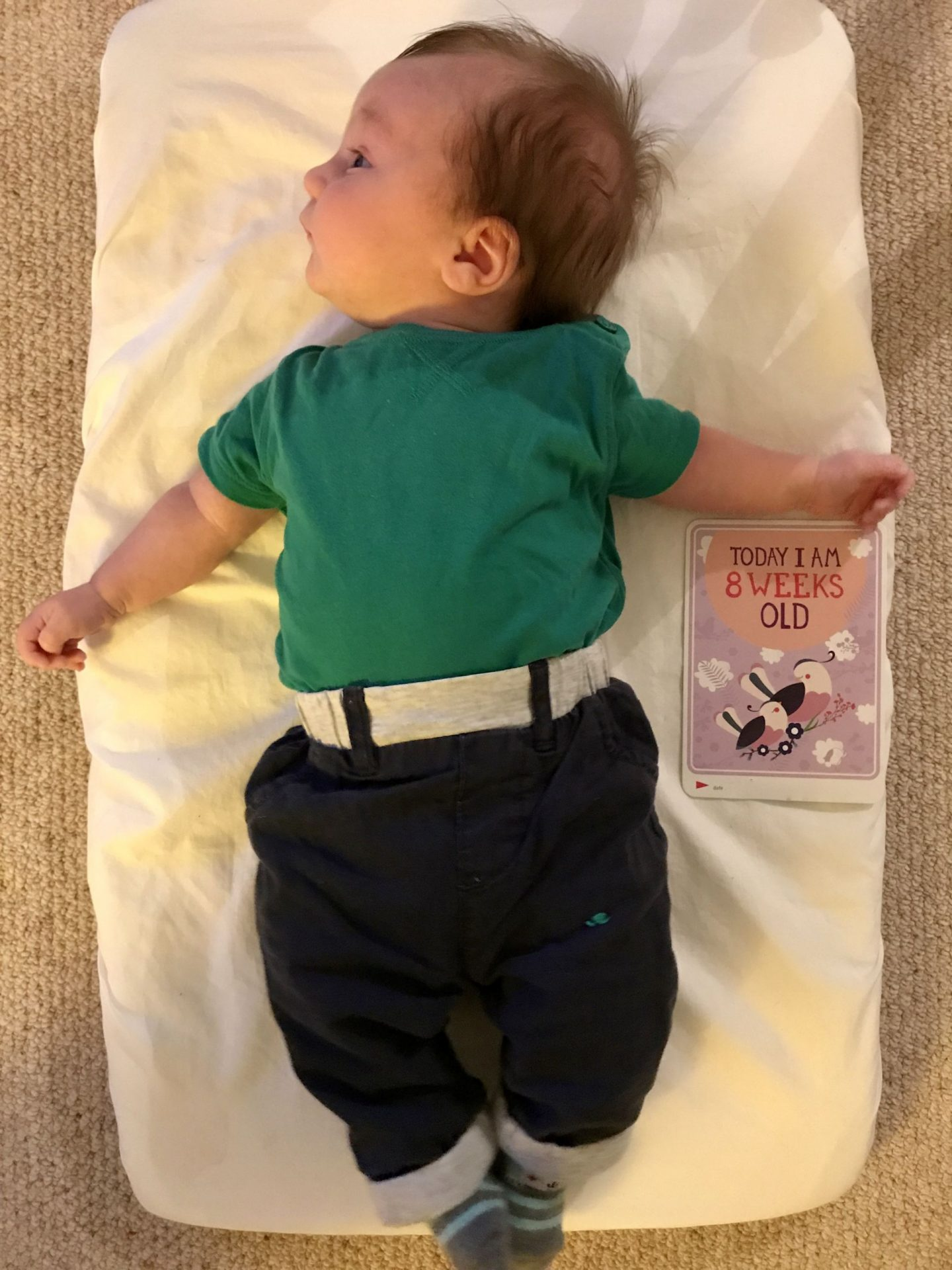 Life With Bump: The Eight Week Update